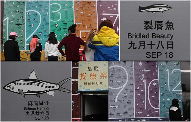 文化中心外牆366種魚,民眾可以認識自己的生日魚。攝影:廖靜蕙
