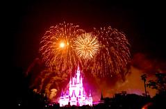 Disney World 2016