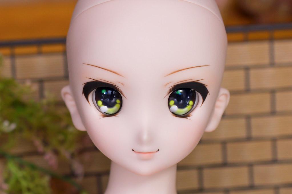 DDH-06(N)Sc-y-head-1