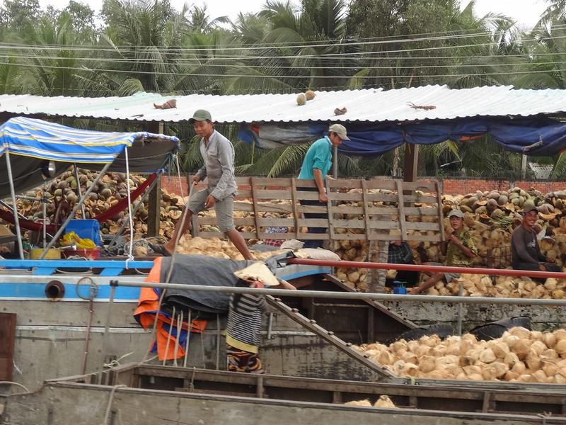 coconut processing
