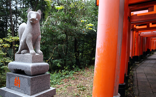 Guardian Fox Deity Fushimi Inari-taisha shrine red Tori gates walk