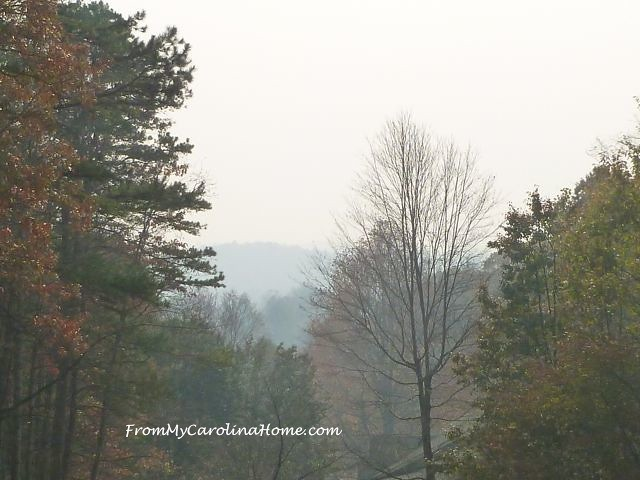 Smoke from Wildfires ~ From My Carolina Home