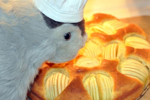 Geburtstag Geburtstagskuchen Geburtstagstorte Apfelkuchen schwäbischer versunkener verschlupfter Karla Kunstwadl Foto Brigitte Stolle