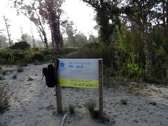 L'arrivée du sentier sur la plage à l'embouchure du Tavignanu