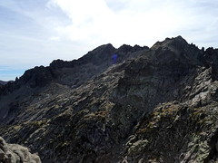 Sommet de la pointe 2456 : le massif du Ritondu et Punta Galiera