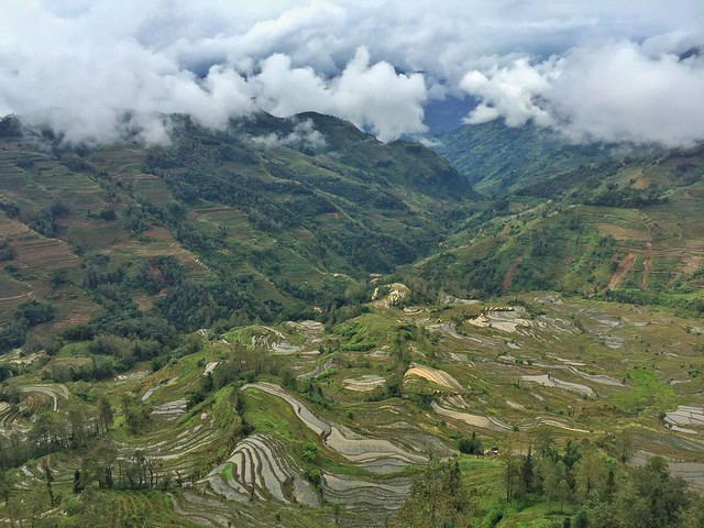 Terrazas de arroz Honghe en Yuanyang (Yunnan)