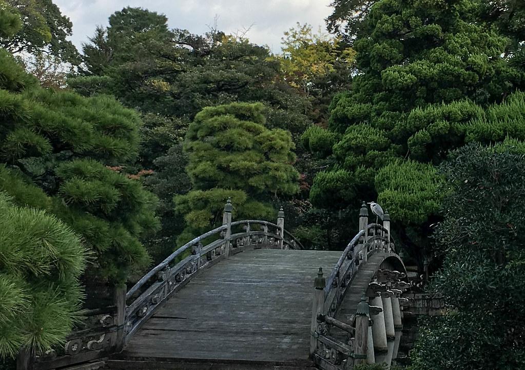 Dans le parc du jardin imp rial de kyoto christian lapie for Dujardin imperial