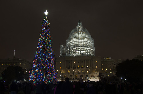 us capitol christmas tree lighting up the west lawn of capitol hill