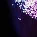 Internet Glasfaser in Nahaufnahme - blau und violett