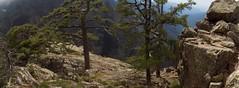 Arrivée sous le sommet du Monte Saltare