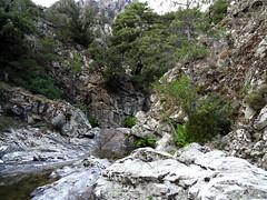 Dans le ruisseau d'Ancinu