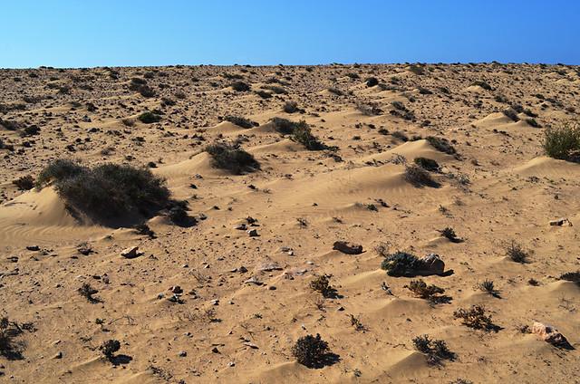 Desert, Jandia, Fuerteventura