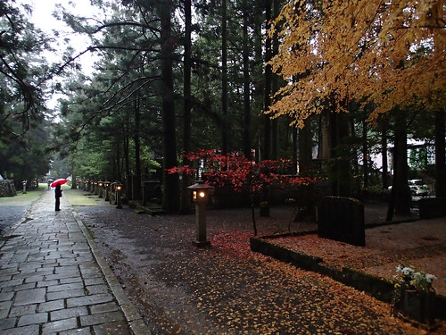 Koyasan Okunoin Cemetery walk at night (2)