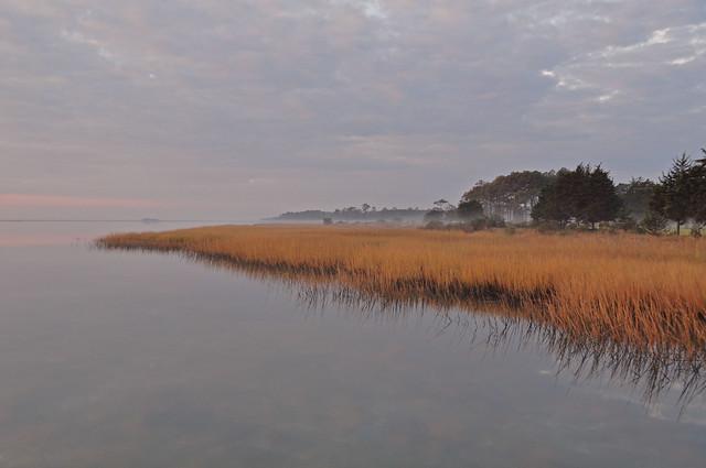 Metompkin Bay (10)