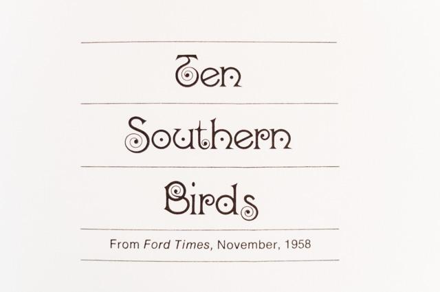 ten southern birds - birds & words book review