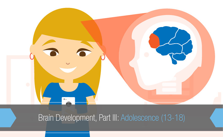 adolescence brain development Understanding adolescent brain development and its implications for the clinician aaron m white, phd division of medical psychology, department of psychiatry, duke university medical center.
