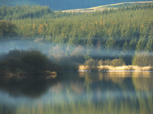 Carron Reservoir, winter day 04