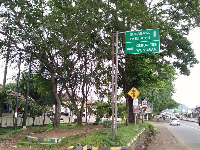 Indahnya Kebun Teh Wonosari Lawang, Malang