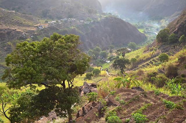 Morning in Ribeira do Paul Valley, Santo Antao, Cape Verde