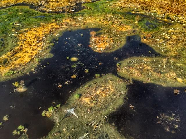 El Delta del Okavango desde una avioneta