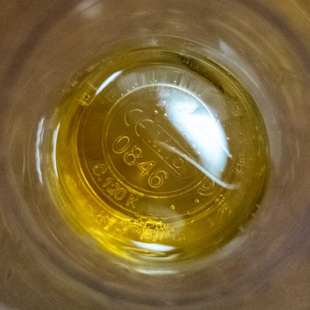 cider taste testing
