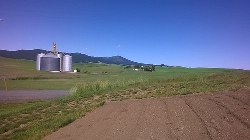 A scenic view from the Plant Germplasm Introduction Research Unit's research Farm in Pullman, Washington with the Moscow Mountain of Idaho State as the background.