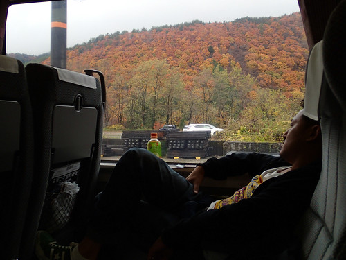 Shinkansen Passenger enjoying Autumn leaves Koyo colours near Matsumoto