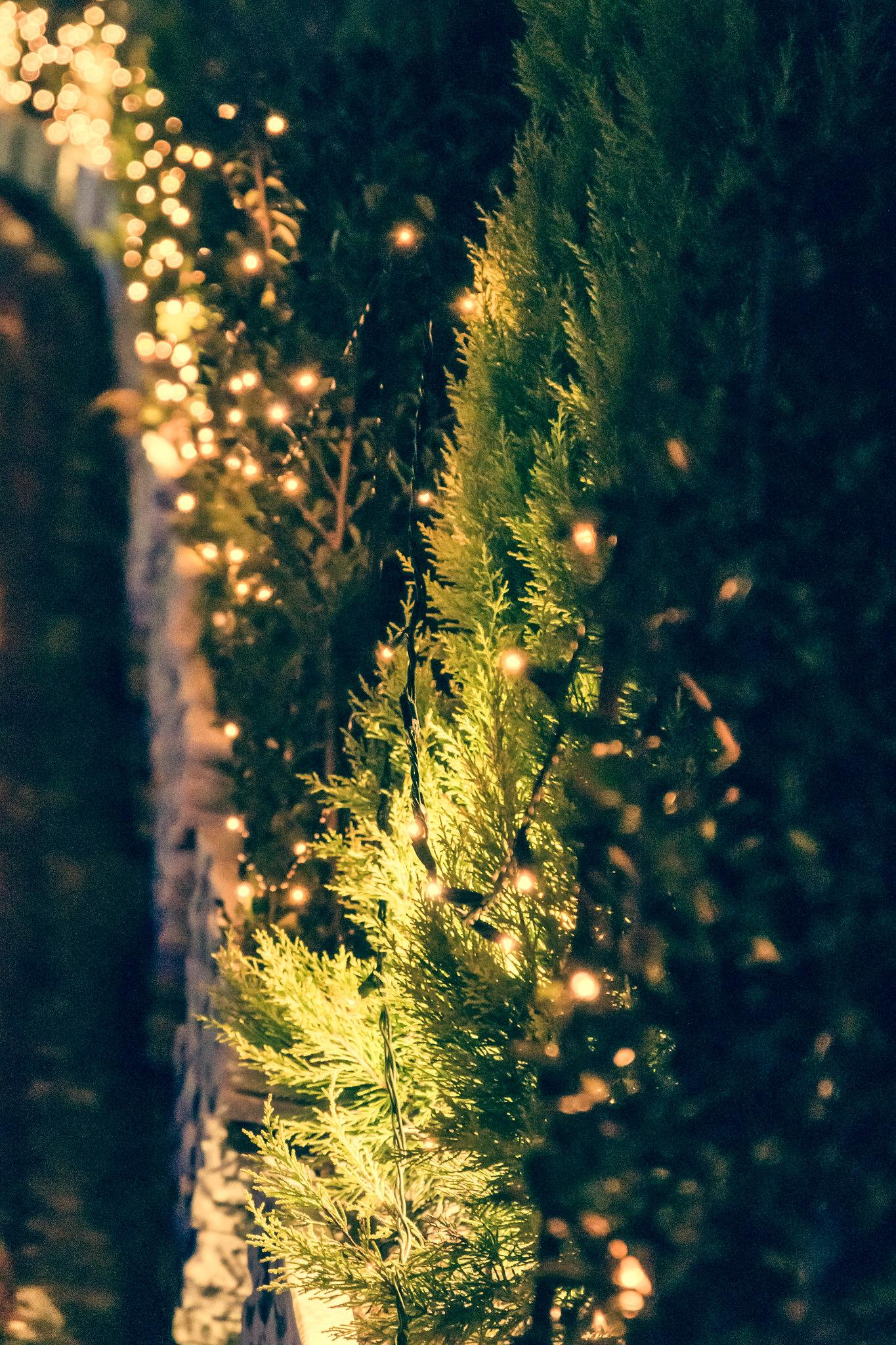 Illumination Road