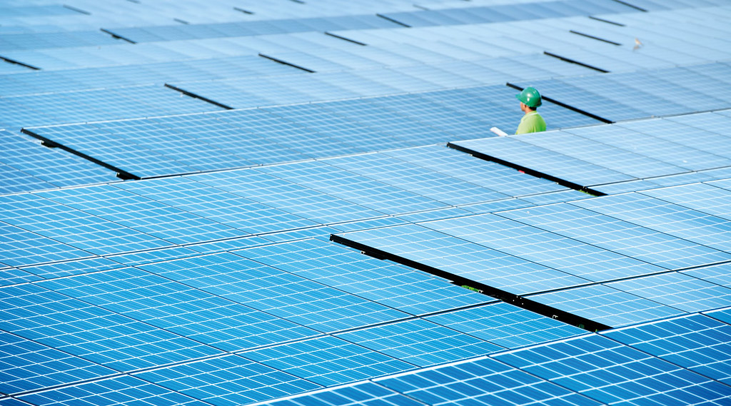 A single man in a safety jacket stands in the middle of a field of solar panels.
