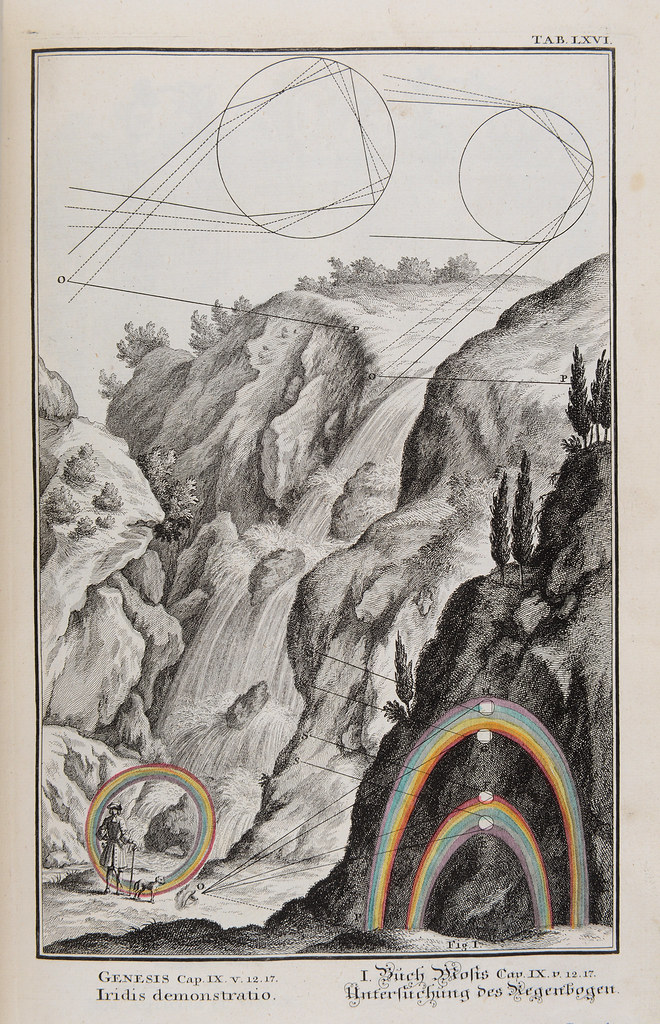 Plate LXVI from Scheuchzer's Physica Sacra (1731).