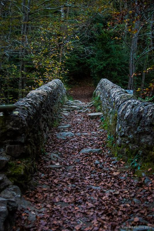 Cruzando por el Pont de Salgueda