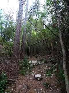 Le sentier de Petra Stretta vers l'arrivée à la piste de Luviu