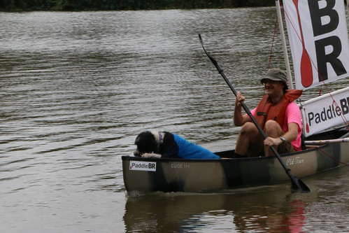 Paddling with someone else's dog.