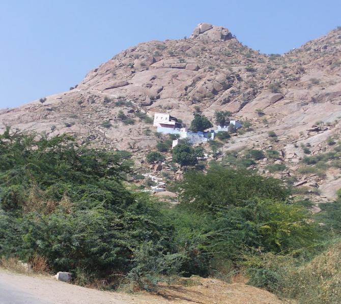 सबसे पुरानी पहाडी में हैं कई अमूल्य औषधियों का भण्डार, आज देखें अरावली पर्वत की नई खूबसूरती