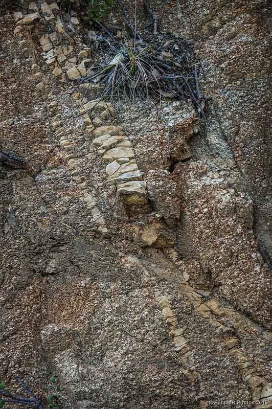 Textura arenosa de la roca