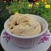 2015-09-24 - Vanilla Custard Ice Cream - 0006 [flickr]