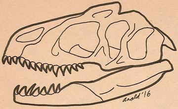 11.8.16 Draw Dinovember 6