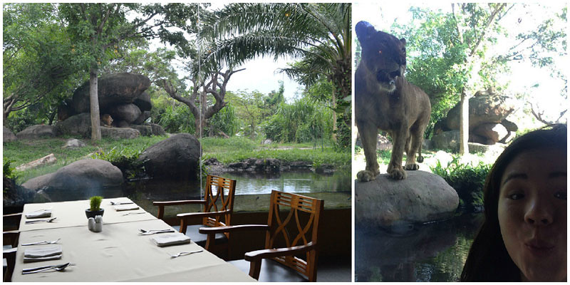 2. Dining with the Lions collage
