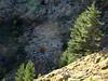 Sur le sentier au-dessus du niveau des bergeries de Timozzu