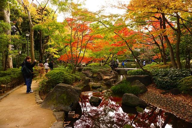 大田黒公園の紅葉(昼間)