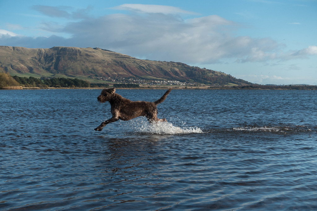 Loch Leven-03541-2