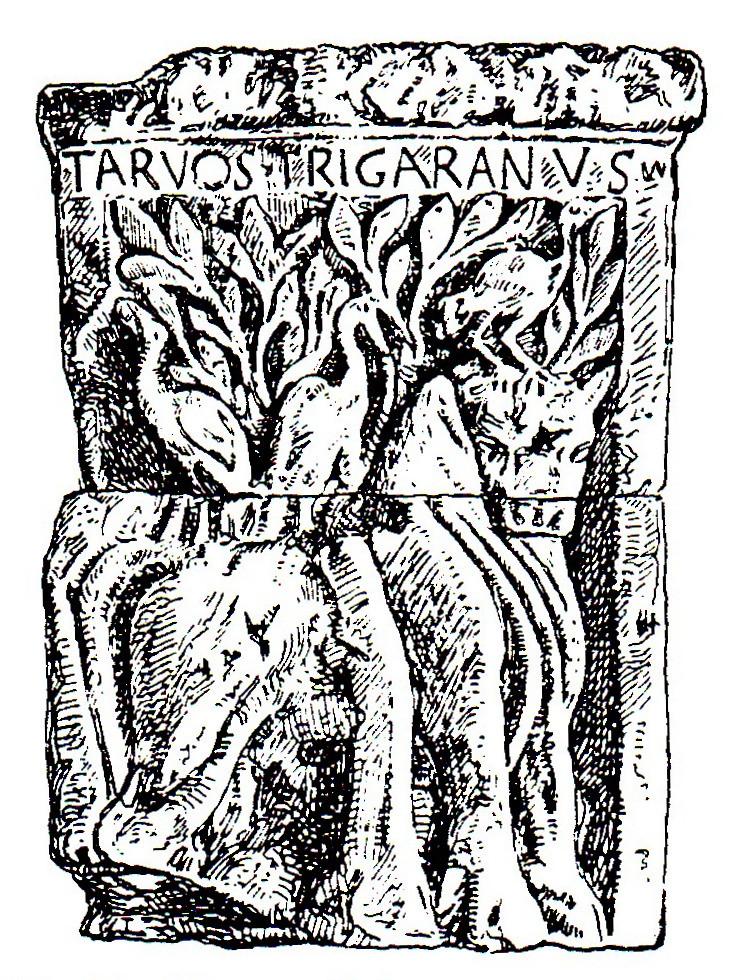 Image result for tarvos trigaranos