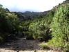 Le replat de la bergerie de l'Ancinu, l'enclos-murets perché et Punta a Cornaccia dans les nuages