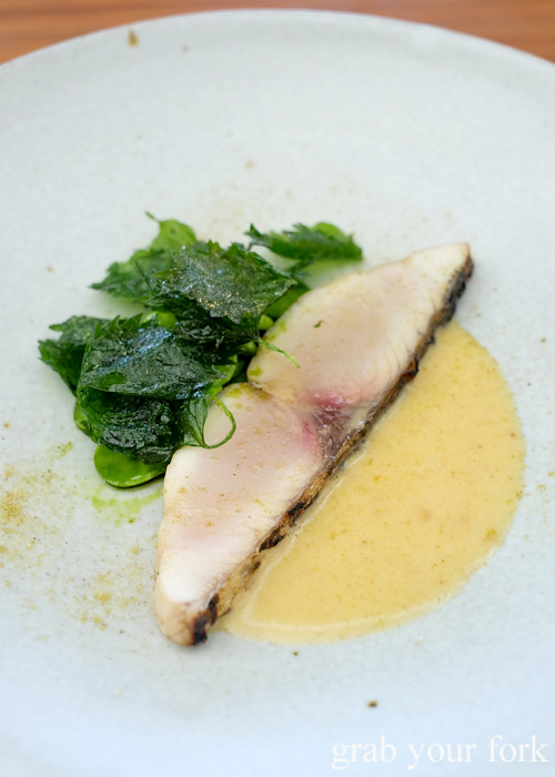 Spanish mackerel with umeboshi butter at LuMi Dining in Pyrmont Sydney