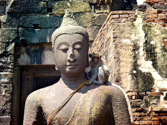 Monkey on Buddha's shoulder