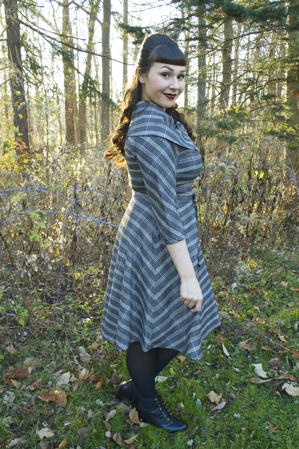 winter vintage dress