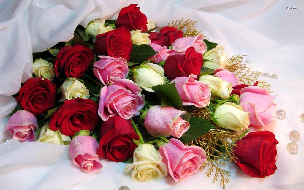 букеты роз фото с телефона