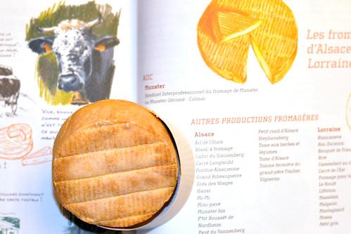 Käse Buch Lektüre Munster Münsterkäse Au Cœur de la France des 1 000 fromages Jean-Marc Navello französisch Baguette Foto Brigitte Stolle 2015