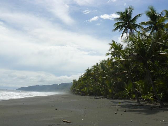 Playa en el Parque Nacional de Corcovado (Uno de los imprescidibles que ver en Costa Rica)