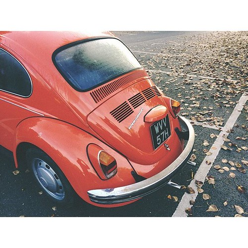 All Hallows' Eve #vespamorephotography #volkswagen #vwbeetle #halloween #classiccars #allhallowseve #allsaintsday